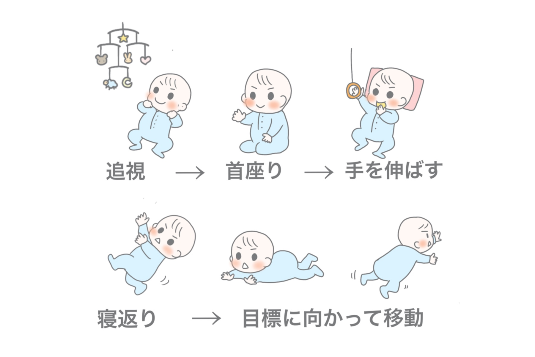 赤ちゃんが動き出す過程