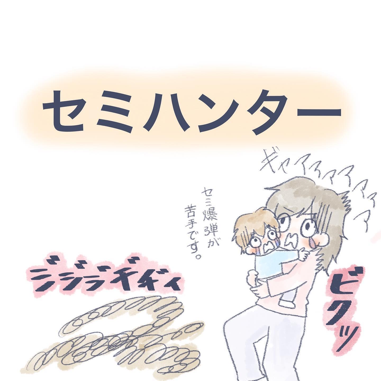 セミハンター - COIQマガジン